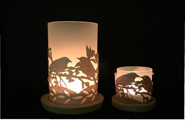 Lantern Birds